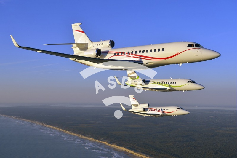 Falcon family in flight